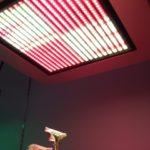 LEDによる養液栽培